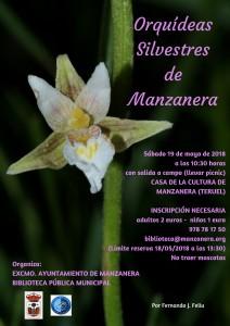 CARTEL ORQUIDEAS MANZANERA 2018-001