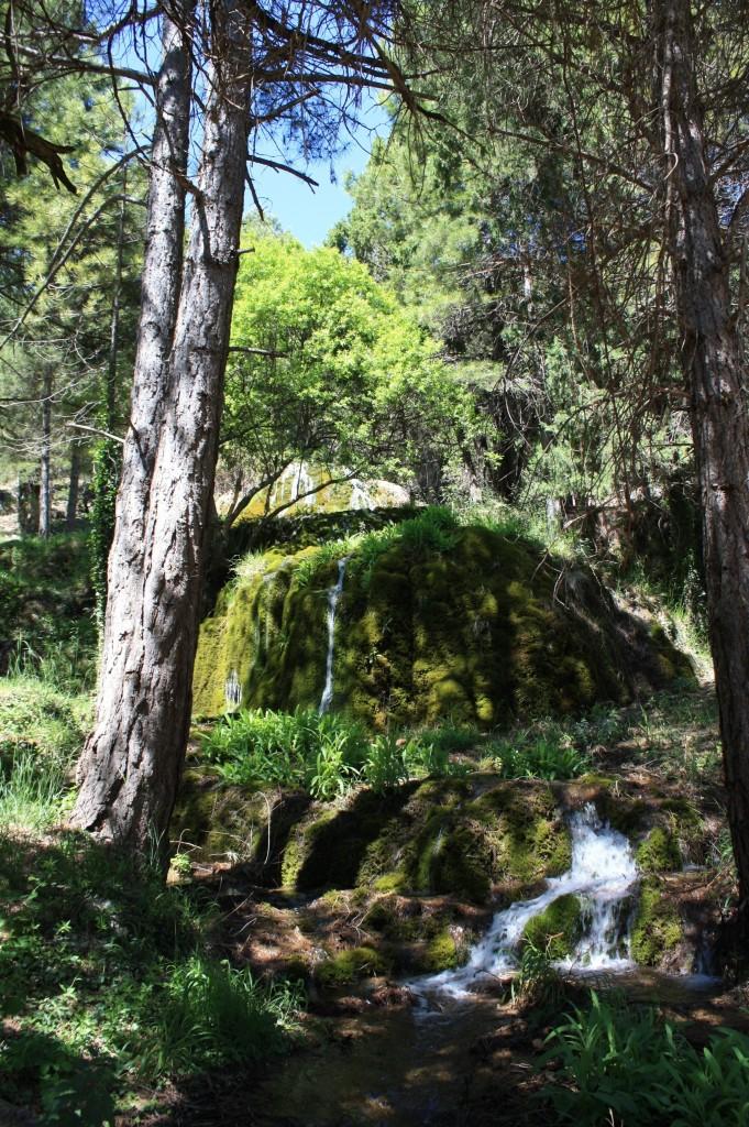 Cascada Tejeda